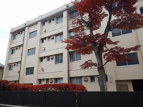 11-19kanryou-8