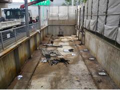 機械式駐車場解体・舗装の工程6