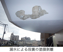 漏水による段裏の塗膜剥離