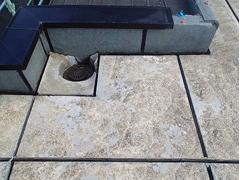 ウレタン塗膜防水工法 施工の状況5